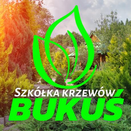 Szkółka Krzewów Bukuś